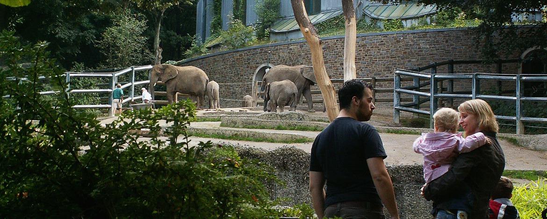 Im Wuppertaler Zoo