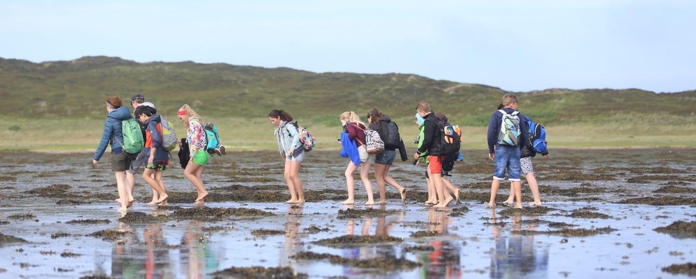 Wattwanderung Nordseeküste
