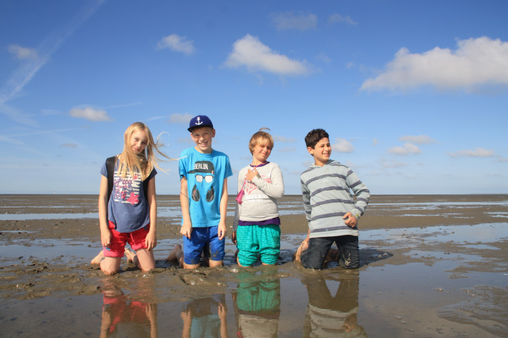 Strand, Watt und Meer auf Sylt