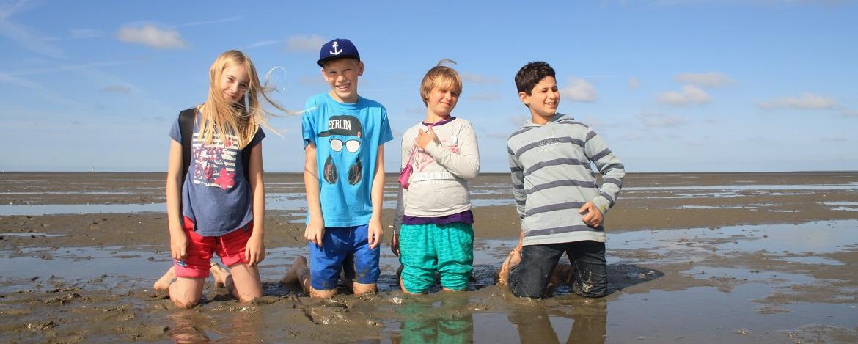 Gruppen im Wattenmeer