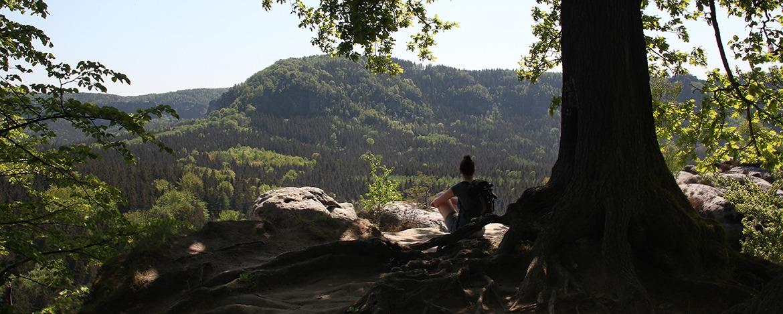Jugendherberge Bad Schandau - Klassenfahrt Elbsandsteingebirge