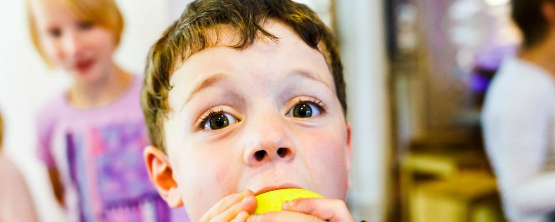 """Eine Klassenfahrt mit Gütesiegel """"Lehrplan unterstützend"""" für Grundschulen"""