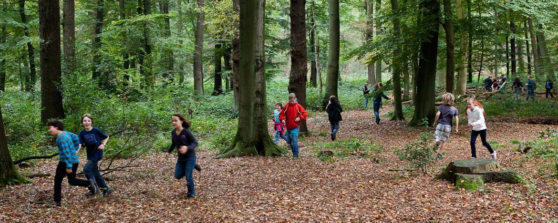 Kinder unterwegs im Wald