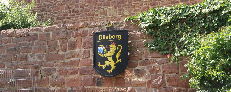 Klassenfahrten Neckargemünd-Dilsberg
