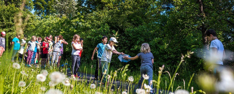 Klassenfahrt in die Natur Dinkelsbühls