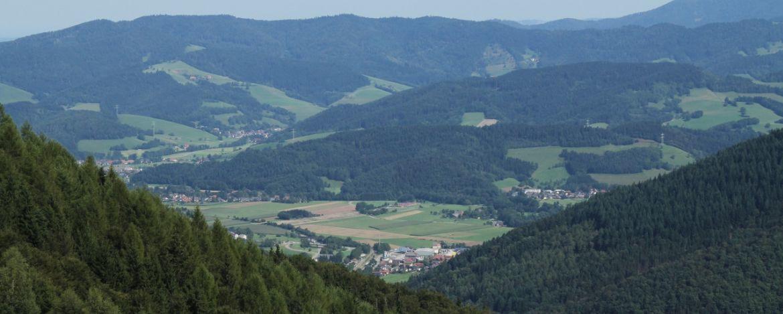 Individualreisen Freiburg International