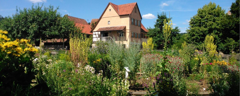 Kräutergarten - Hohenloher Freilandmuseum