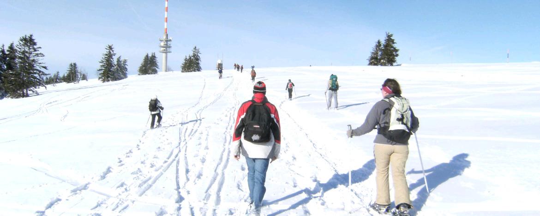Individualreisen Schluchsee-Wolfsgrund