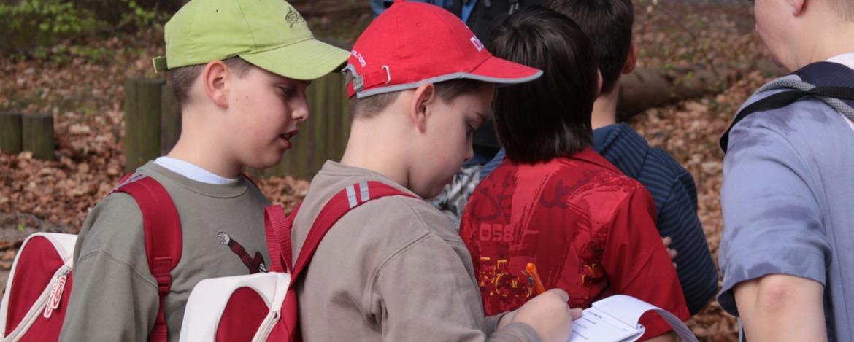 Schüler im Wald