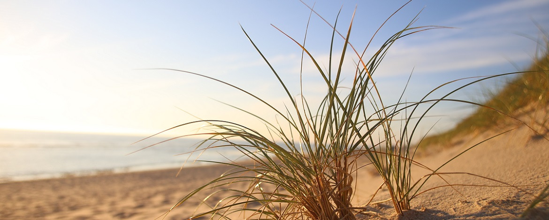 Strand der Insel Sylt