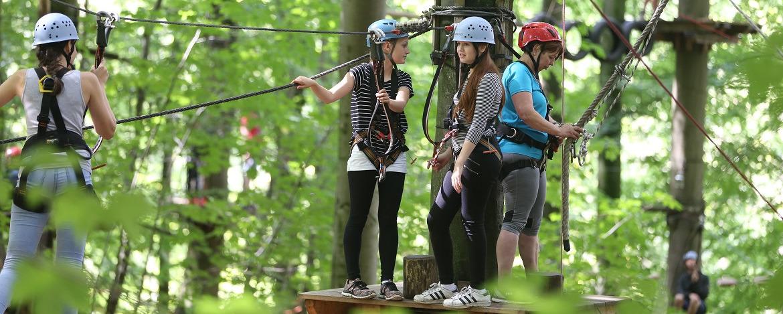 Klettern mit Teambuilding im Hochseilgarten