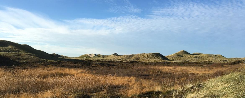 Landschaft auf der Insel Amrum