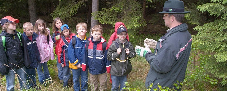 Waldprogramm mit dem Förster
