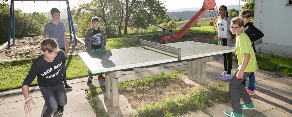 Hildesheim: Roemer- und Pelizaeus-Museum