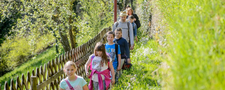 """Erlebnisprogramm """"Die Meisterdetektive"""" in der Jugendherberge Bad Neuenahr-Ahrweiler"""