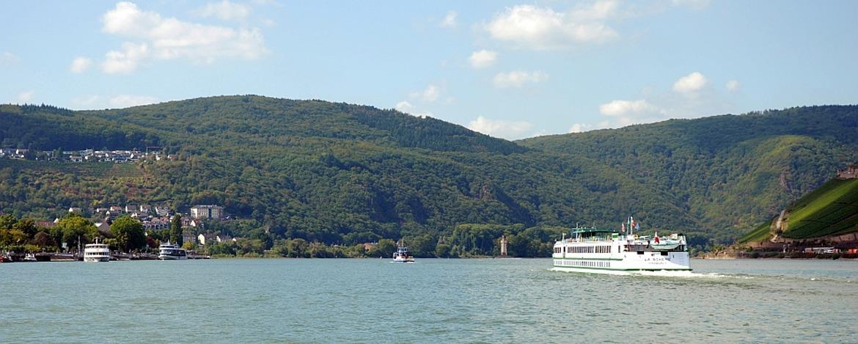 Blick vom Rhein auf Bingen