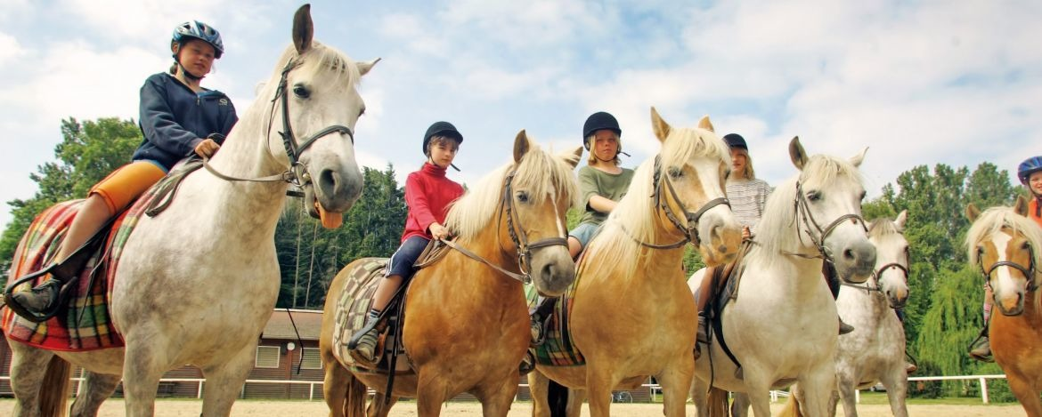 Youth hostel Barth horse riding school