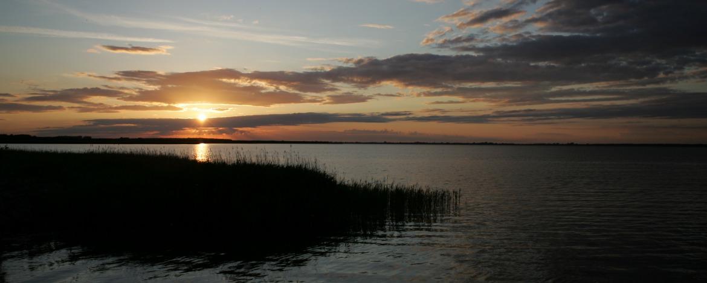 Sonnenuntergang am Bodden