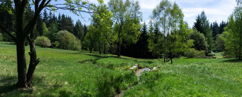 Reiseangebote Grumbach