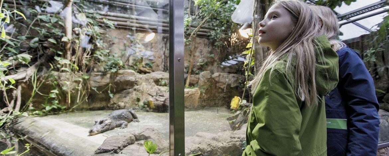 Klassenfahrten Wuppertal