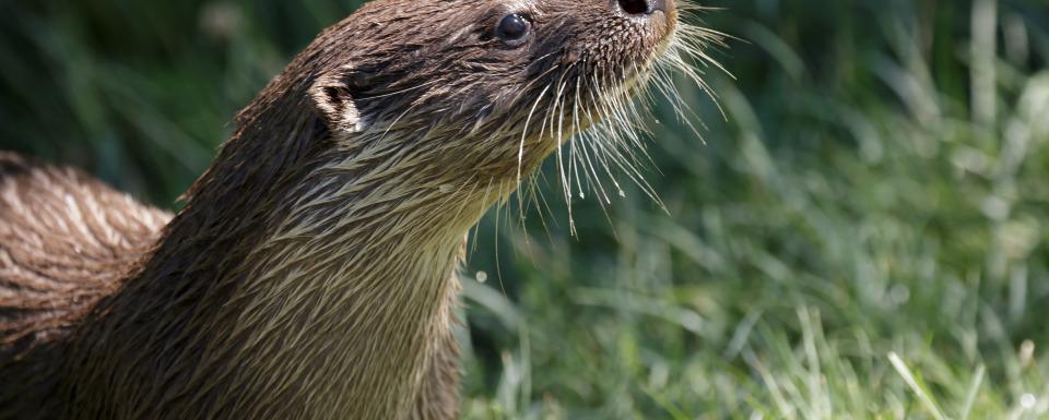 Fahrradtour in der Lüneburger Heide