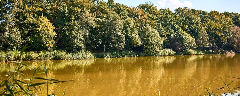 Freizeit-Tipps Cappenberger See