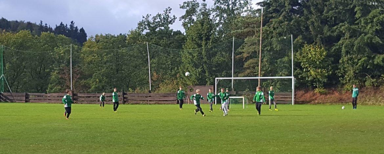 Fußballplatz mit Flutlicht nach DFB-Norm