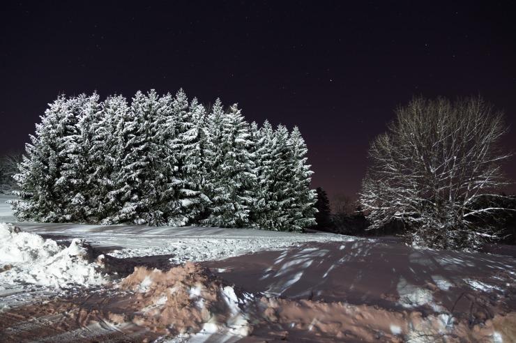 Winternacht auf der Schwäbischen Alb