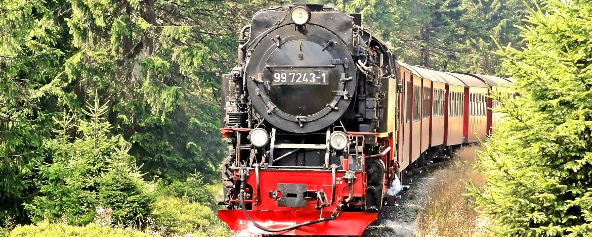Unterwegs im Nationalpark Harz