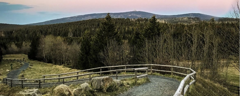Harz-Panorama