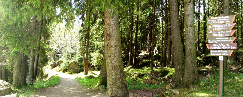 Wanderwege im Harz