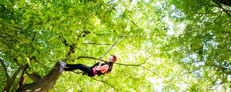 Baum-Kletter-Training