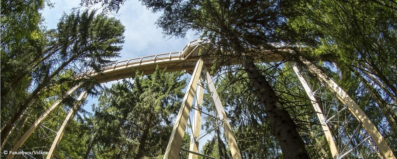 "Klassenfahrten Waldbröl ""Panarbora"""
