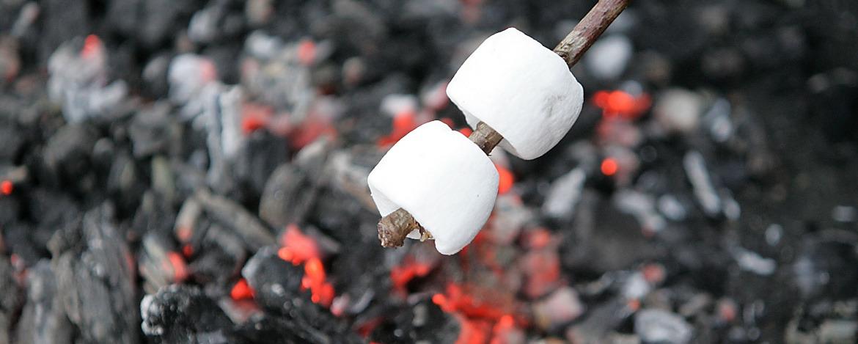 Marshmallow rösten