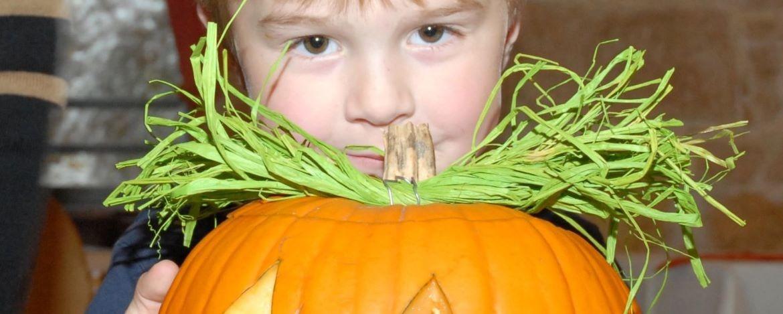 Halloweenprogramm Sargenroth