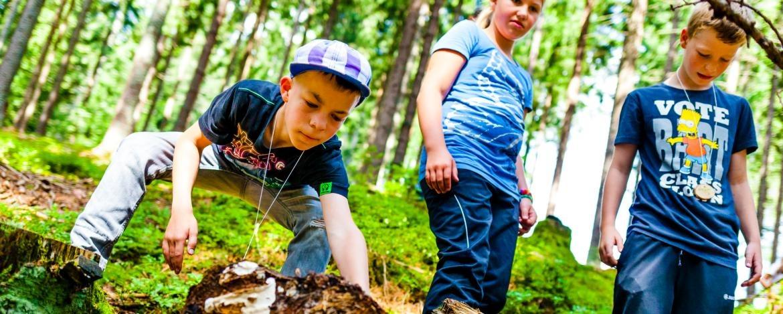 Klassenfahrt für Grundschulen mit Naturexkursionen