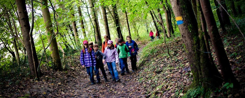 Klassenfahrt für Grundschulen mit Naturbausteinen