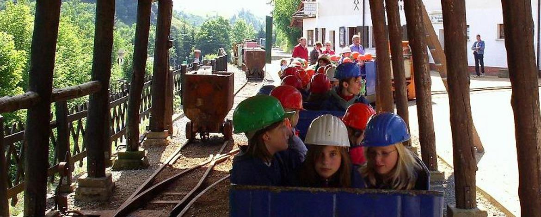 """Bergwerk """"3 Kronen und Ehrt"""" in Elbingerode"""