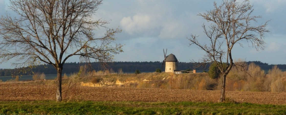 Holländer Windmühle in Warnstedt