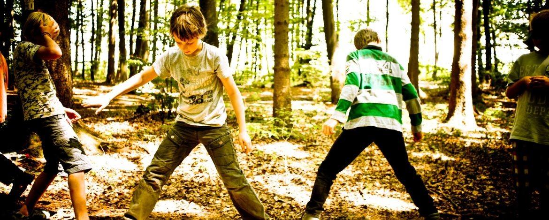 Teamtraining im Wald