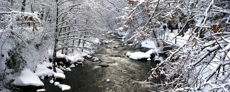 Winterliche Bode am Waldkater