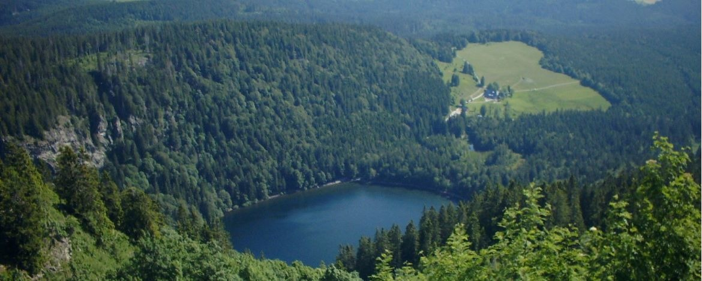 Feldsee im Schwarzwald