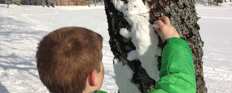 Landart Schnee