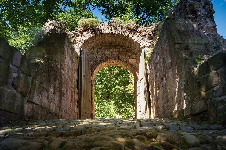 unterwegs in der Natur zum Kyffhäuserdenkmal