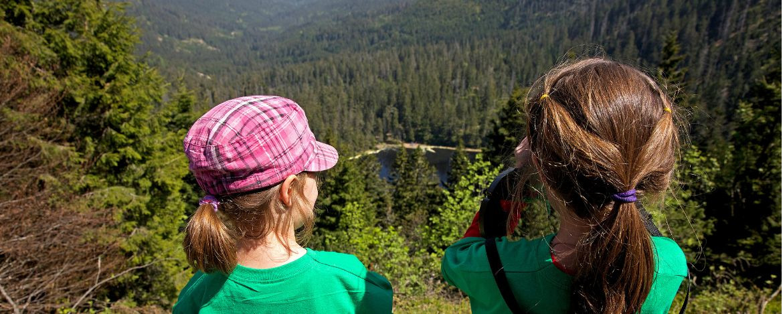 Wald- und Kreativ-Freuden