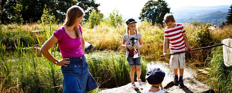 Biologische Wassergütebestimmung im Fließgewässer und im Teich