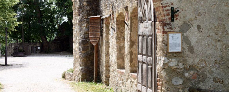 Seitenansicht der Ruine Hornstein