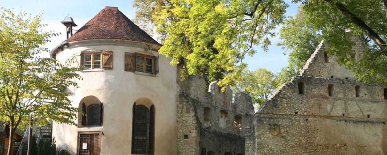 Vorderansicht der Ruine Hornstein