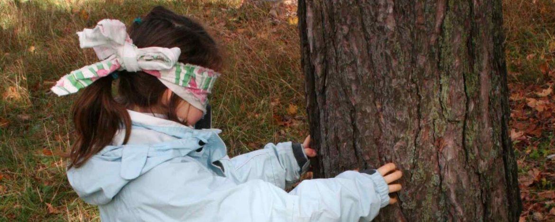 Kind mit verbundenen Augen ertastet einen Baum