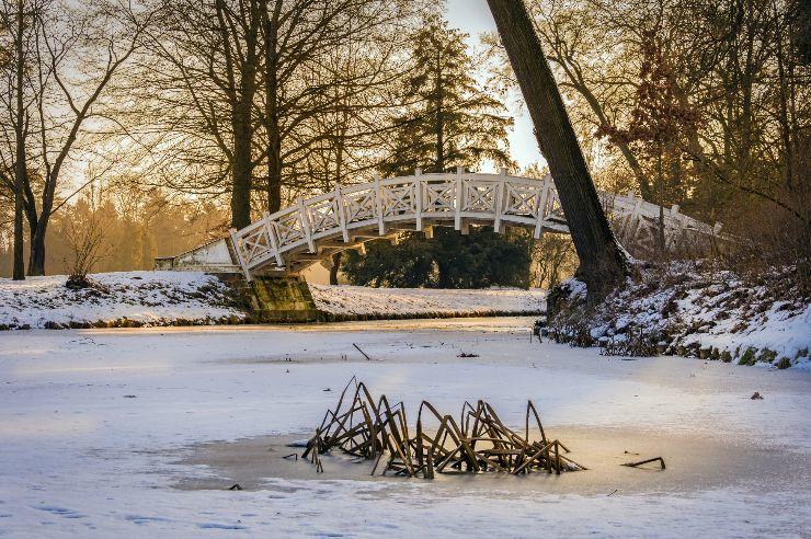 Wörlitzer Park im Winter